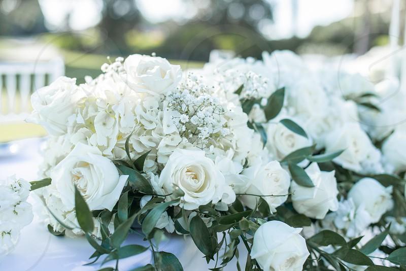 White roses bouquet photo