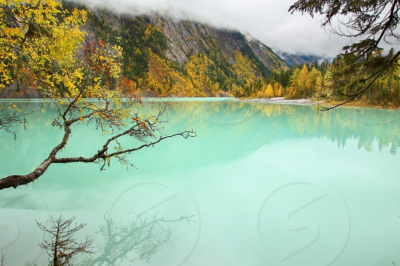 Autumn at Kinney Lake situated at the base of Mount Robson. photo