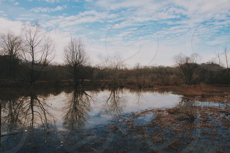 Constitution Lake. Atlanta GA photo