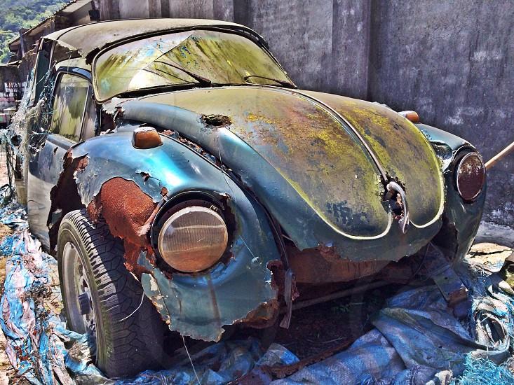 Abandoned beetle 2 photo
