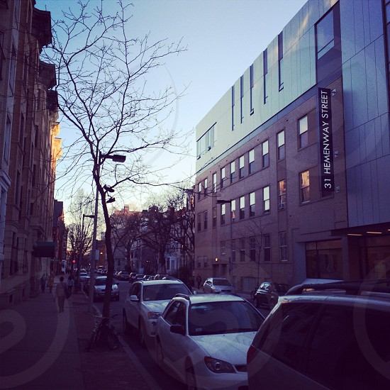 Bostonian streets photo