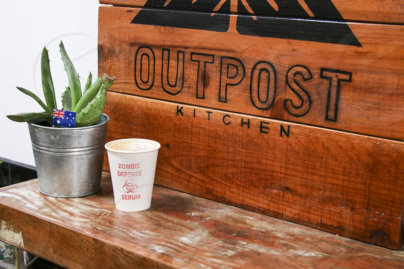 Outpost Kitchen latte with sign and aloe vera plant photo
