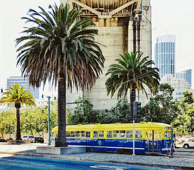 Palm trees streetcar urban street  photo