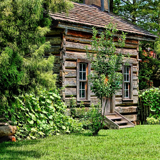 brown wooden cottage house near green leaf plant during day time photo