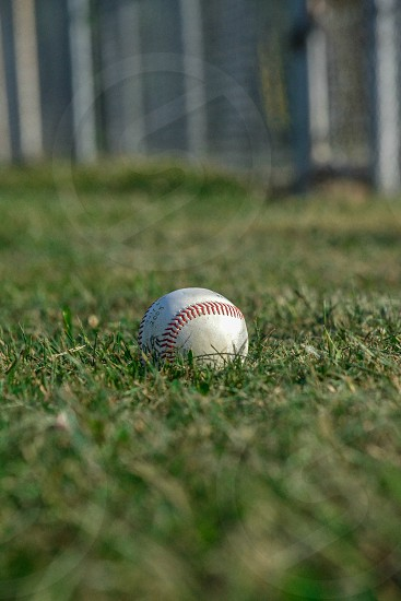 baseball ball on grass photo