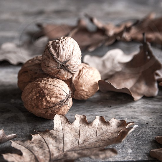 nuts and leaves on wooden table photo