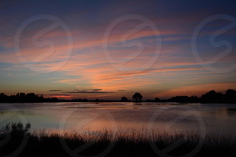 Sunrise at the pond photo