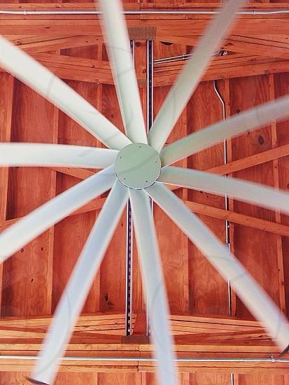 Natural light spinning fan  photo