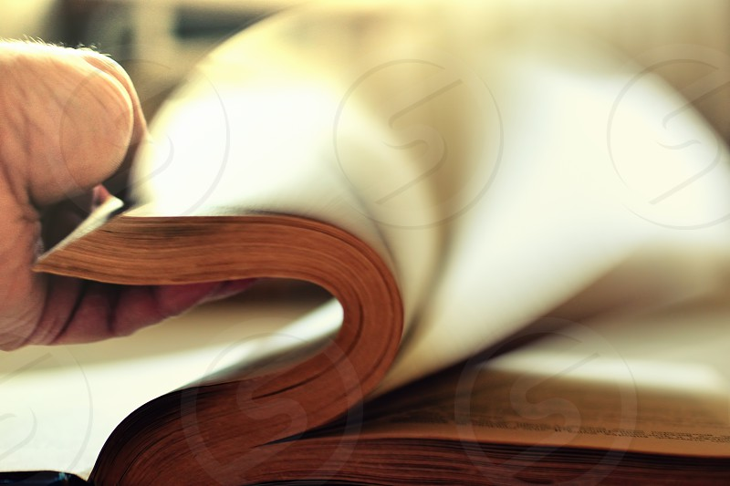 book blur reading evening abstract concept lifestyle photo