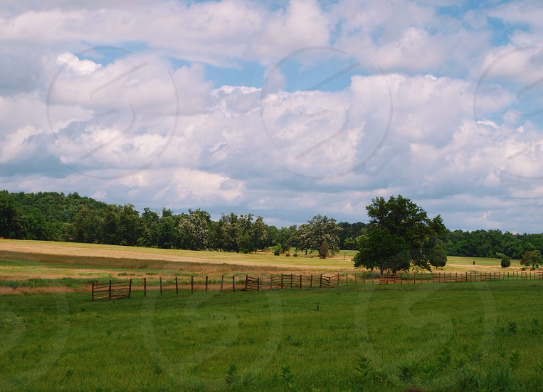 green grass view photo