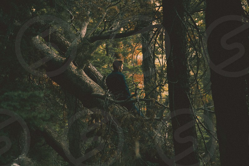 man in black coat leaning on forest tree photo