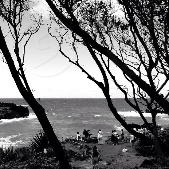 View of pacific from Hana Maui Hawaii USA  photo