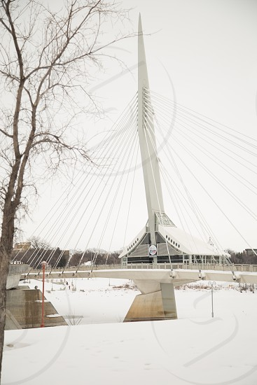 Esplanade Riel - Walking Bridge - Winnipeg Manitoba Canada photo