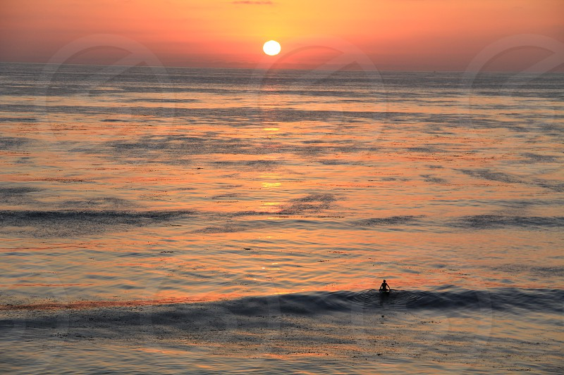 Lone Surfer photo