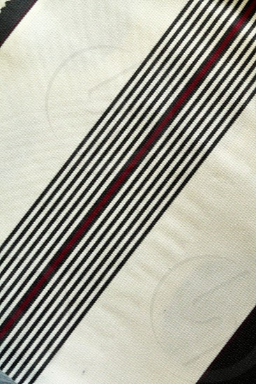 The Stripe! photo