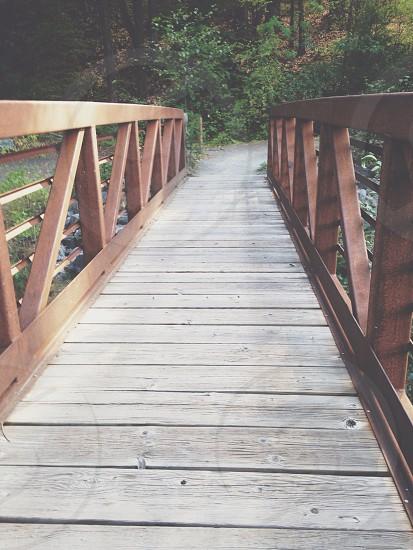 Let's take a walk. photo