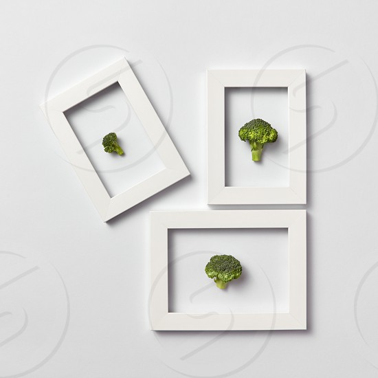 Freshly picked parts of natural healthy broccoli in a frames on a light gray background place for text. Top view. Concept vegan food. photo