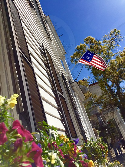 American flag Charleston South Carolina Spring  photo