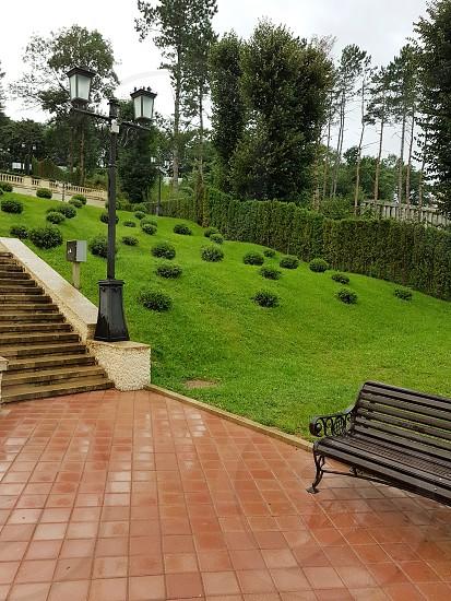 Park with landscape design photo
