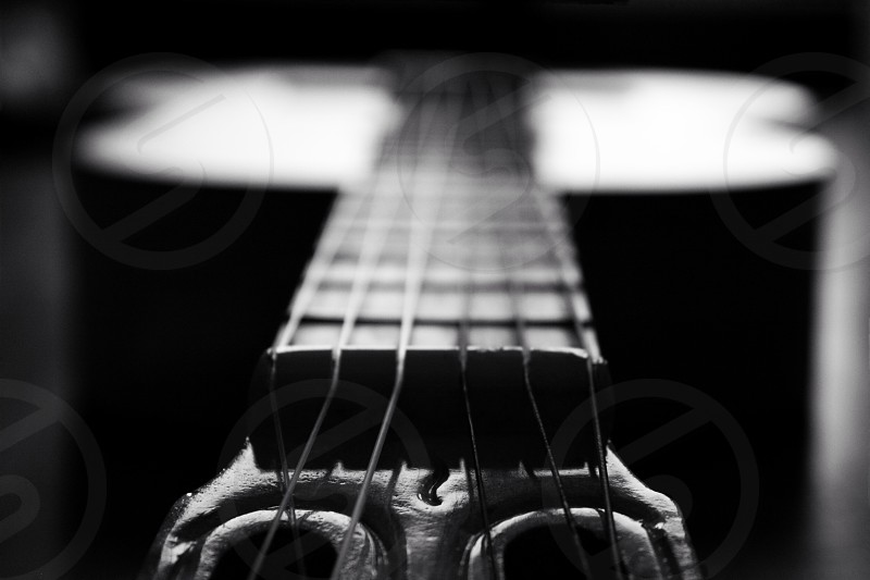 grayscale photography of guitar fret with string photo