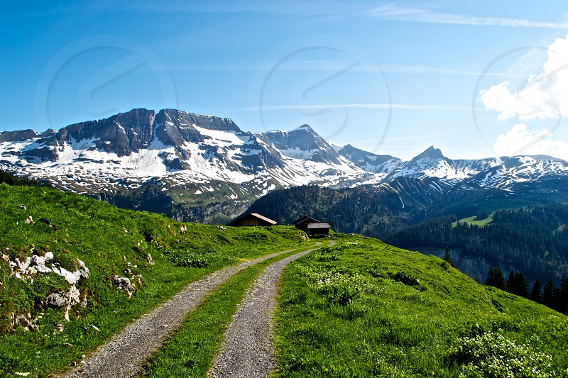 Switzerland Alps Mountains Sunny Path Snow Green photo