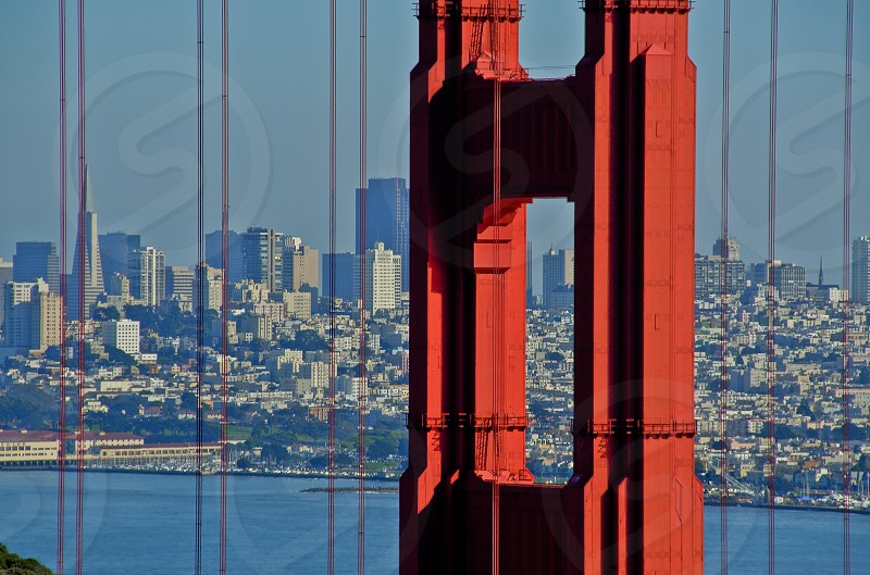 San Francisco Through The Golden Gate photo