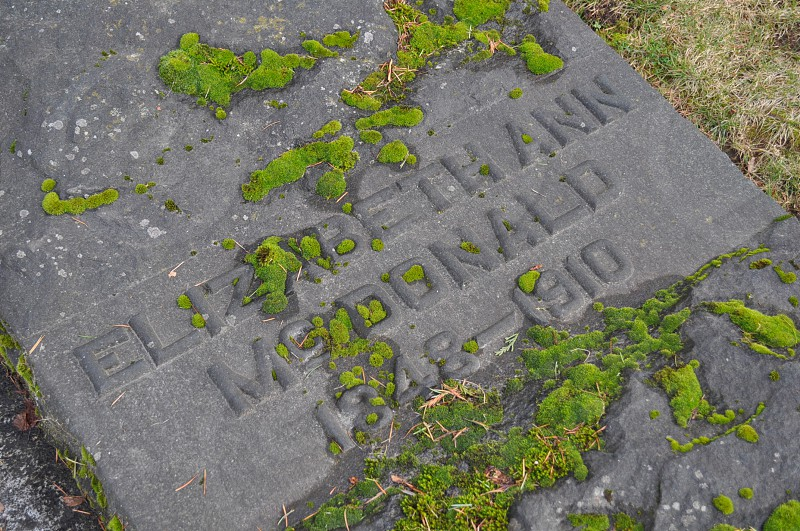 Lakeview Cemetery Seattle headstone tombstone grave photo