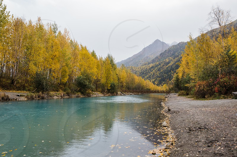 Colorful autumn season in Alaska photo