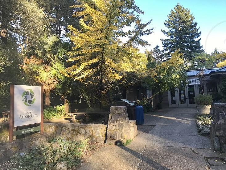 Hoyt Arboretum Portland Oregon photo