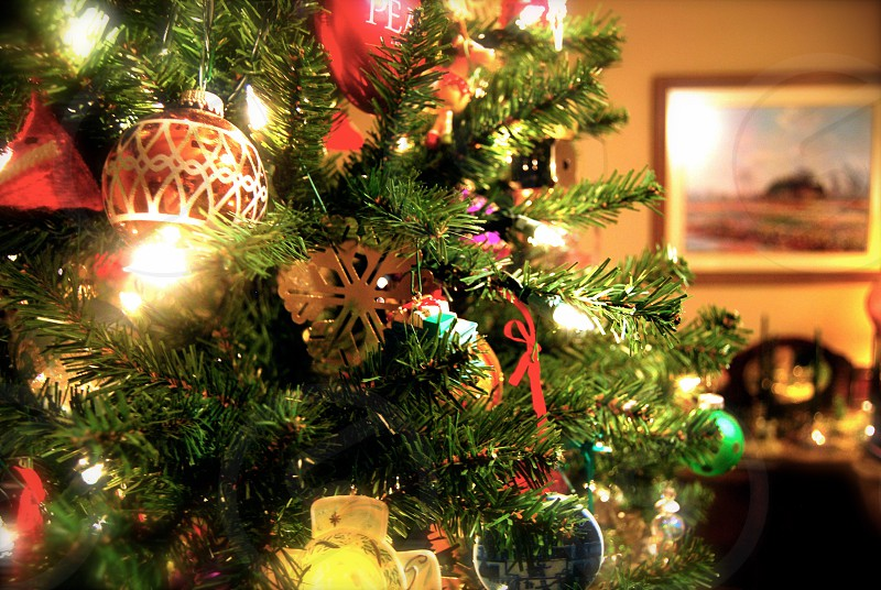 green christmas tree with decors photo