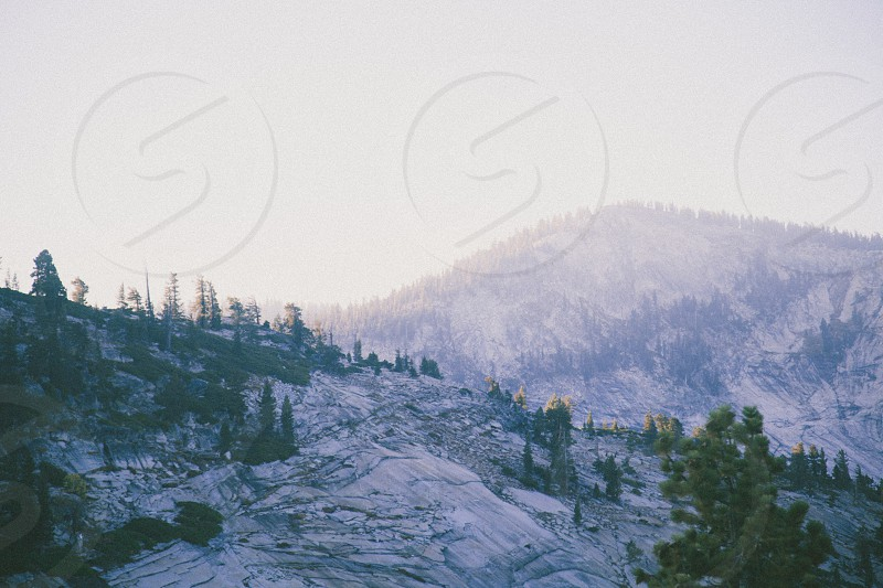snow covered mountain top with green trees photo