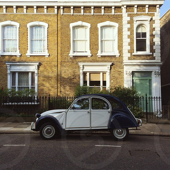 blue and white volkswagen beetle photo