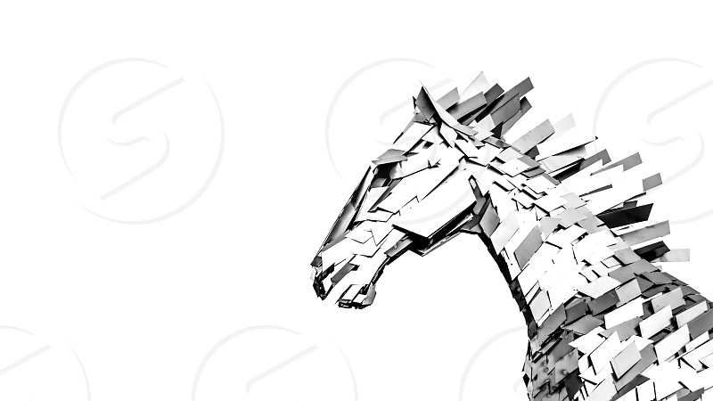 Horse architecture white background black white b&w  photo