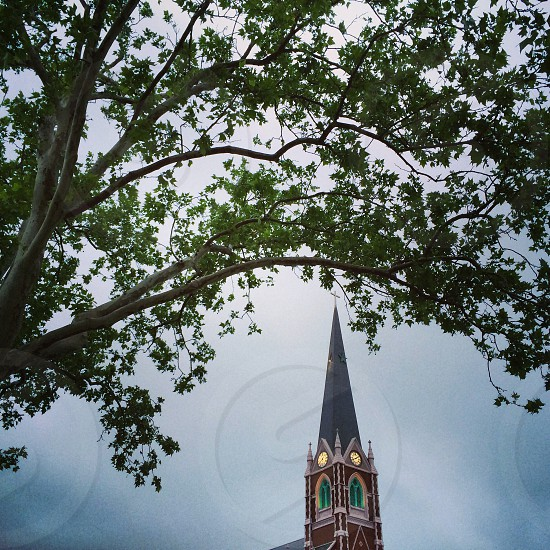 #steeple #NYC #tree #unique photo