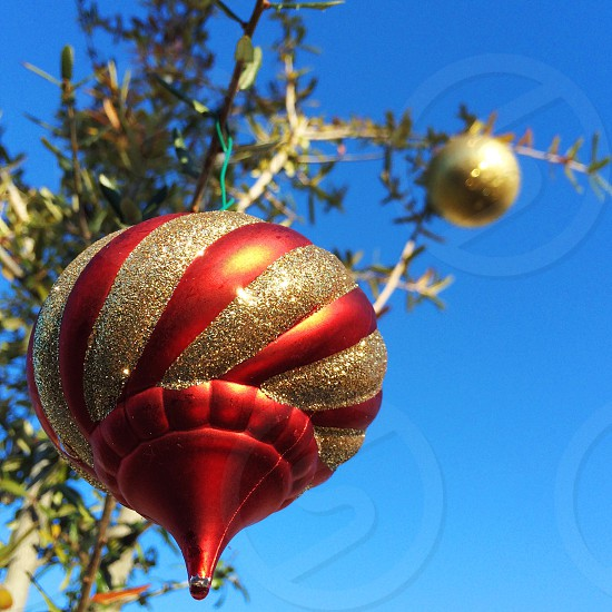 Ornament Christmas holiday winter festive sky gold red photo