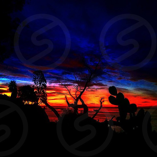Rainbow of dawn  photo