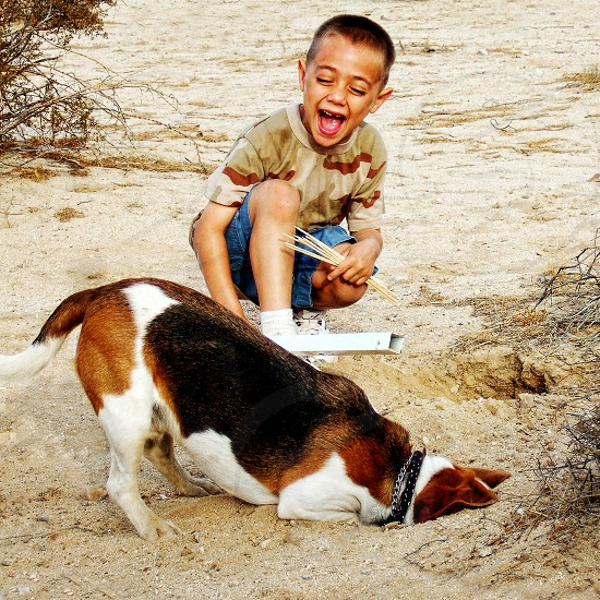 Little boy laughs as he watches his pet beagle dig a deep hole in the sand. photo