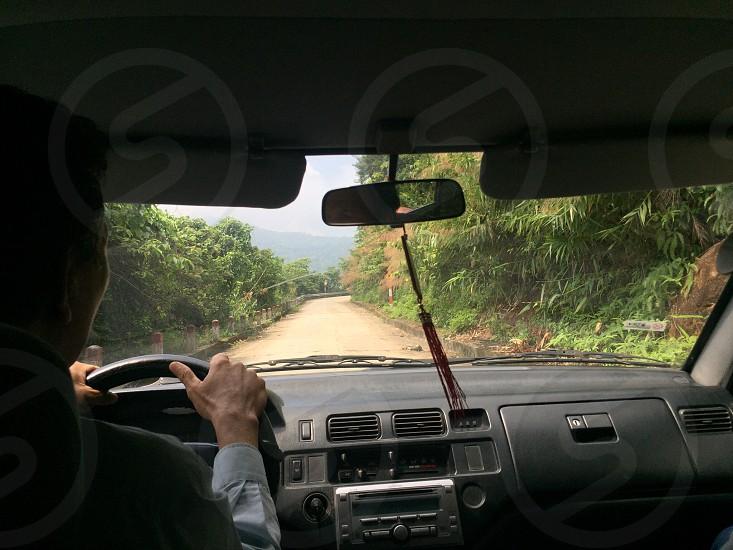 Driving through a jungle photo