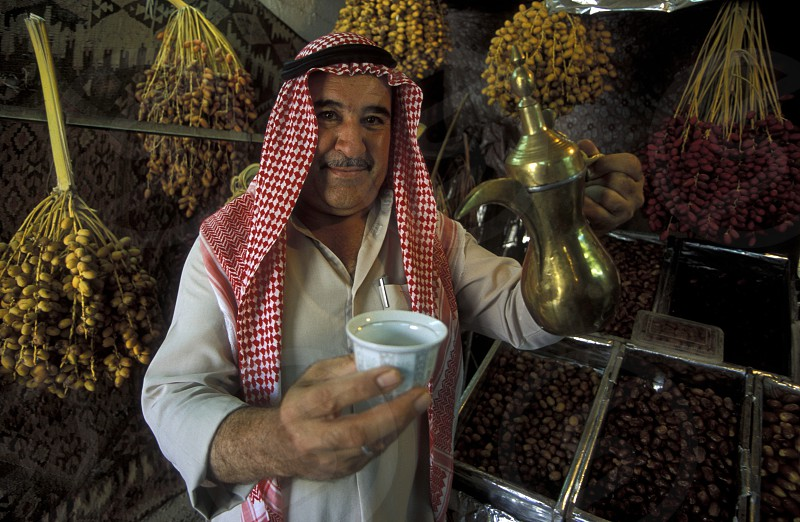 a dates Plantation in the village of Palmyra in Syria in the middle east photo