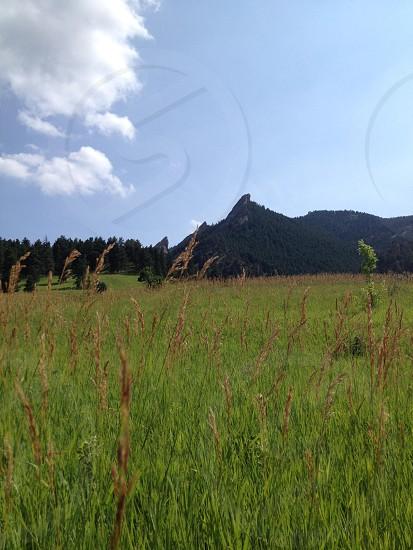 Field | Outside Boulder CO photo