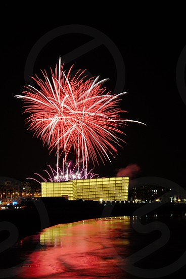 photo of pink and white fireworks photo