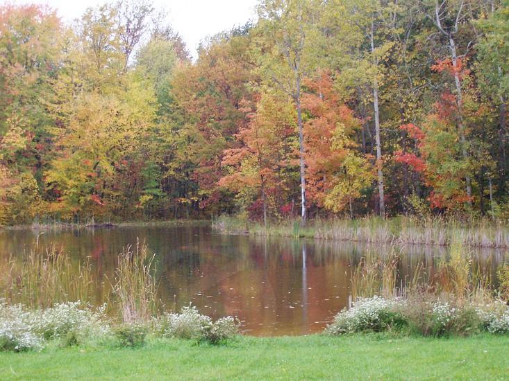 Erie in Fall photo