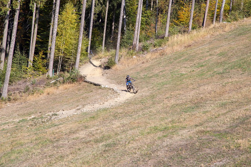 mountainbiker on a descent through the forest in autumn photo