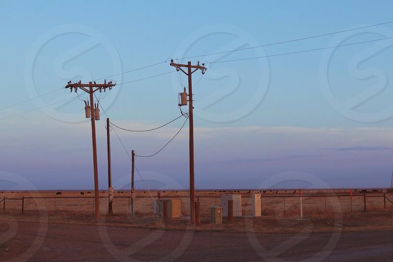 Texas power lines.  photo