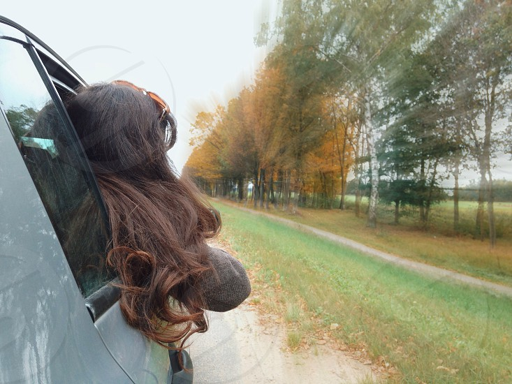 brown haired woman in grey car sticking head out of window photo