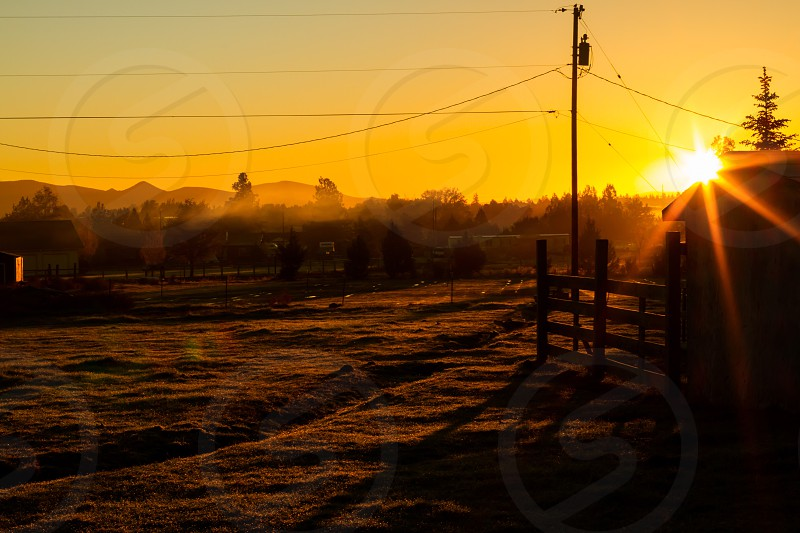 Sun Sky sunrise fog foggy clouds cloud sunny log tree silhouette fence shadow shadows orange yellow sunlight light farm trees soft trench field  photo