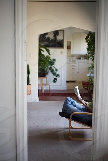 Apartmentbookreadingplantscactus photo