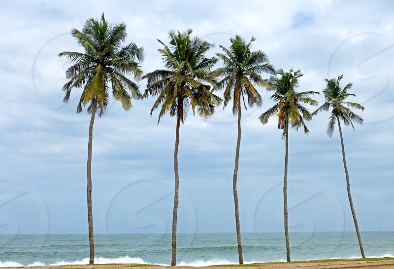 Ghana Coastline photo