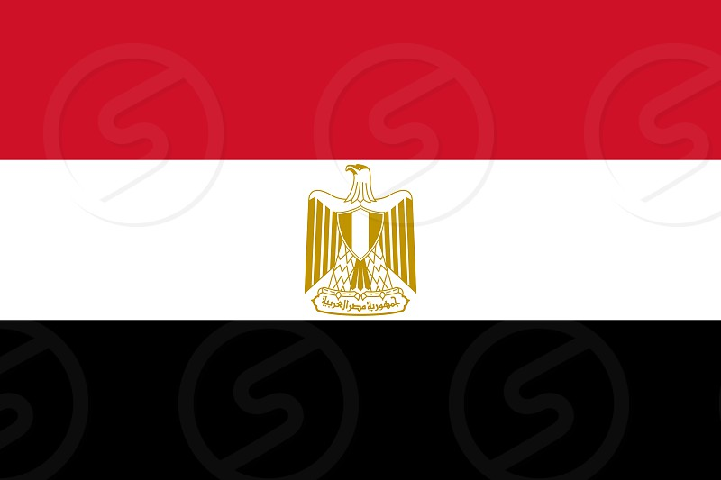 Official Large Flat Flag of Egypt Horizontal photo