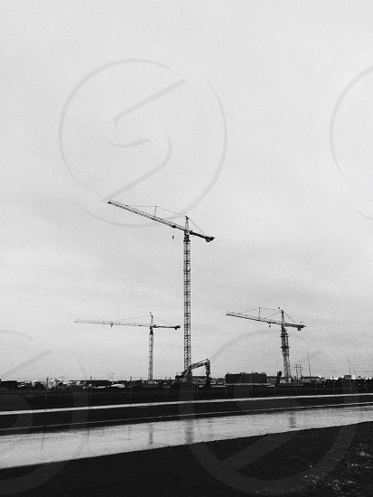 black cranes beside the river during daytime photo